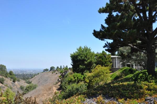 Pacific Ridge View