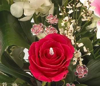 Rose Gems