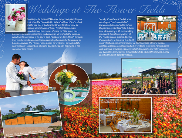 Flower Fields Weddings