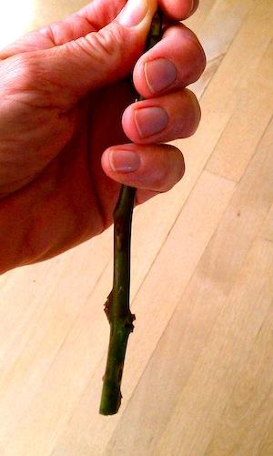Floral Knife Stem Hold