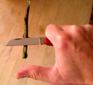 Floral Knife Thumb Position