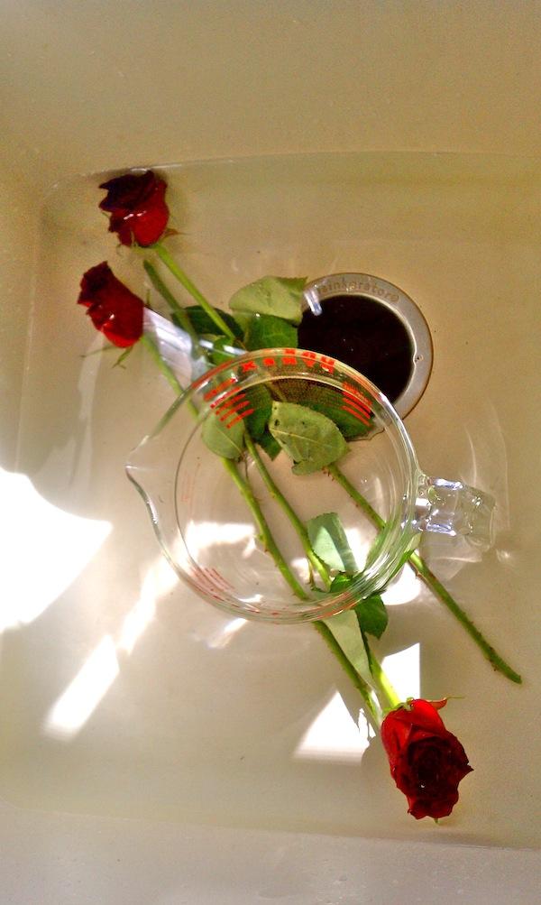 46 cent FlowersRevive Wilted FlowersMonochromatic Flower