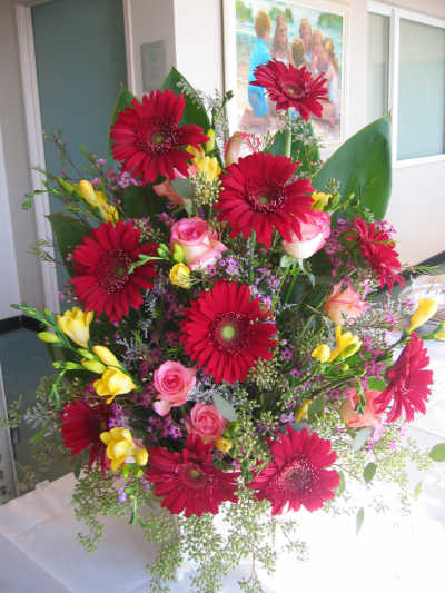 Gerber Daisy Wedding Bouquets Pictures on Flower Arranging Ideas   Summer Flowers   Red Gerbers